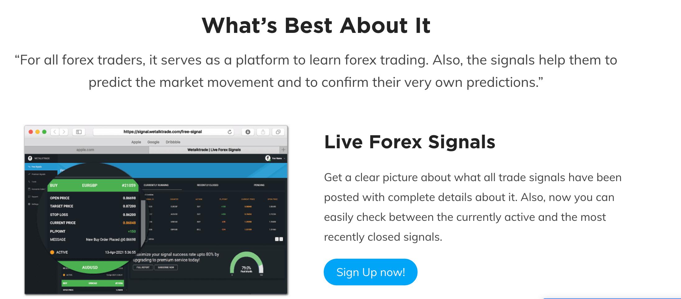 forex trading signals provider