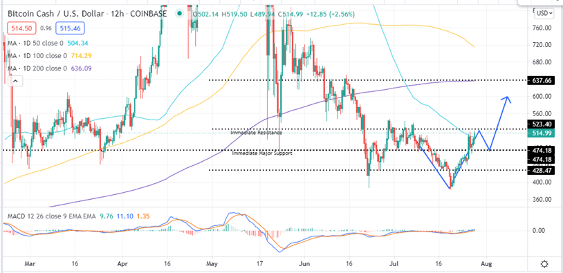 Bitcoin Cash Price 12-H Chart