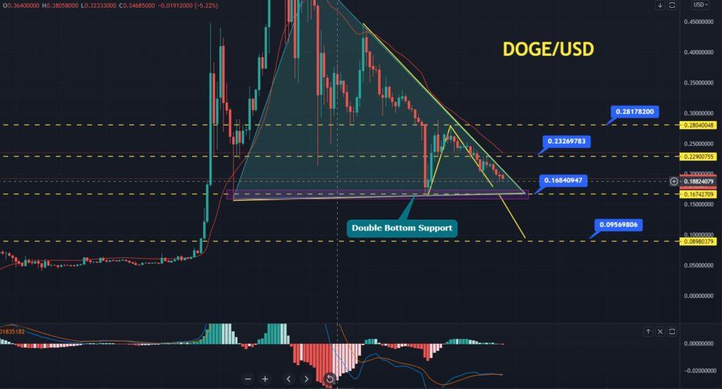 DOGE Price Forecast