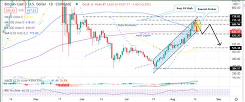 Bitcoin Cash Price Daily Chart