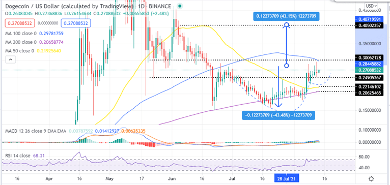 Dogecoin price daily chart